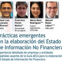 Prácticas emergentes en la elaboración del Estado de Información No Financiera